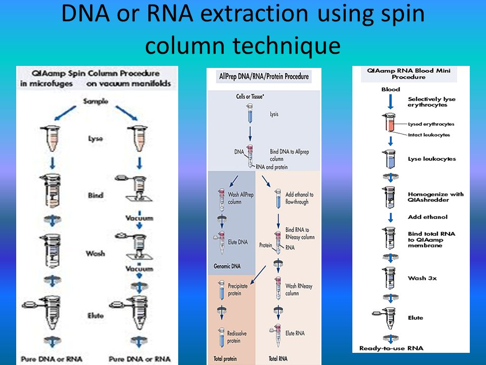 DNA or RNA extraction using spin column technique