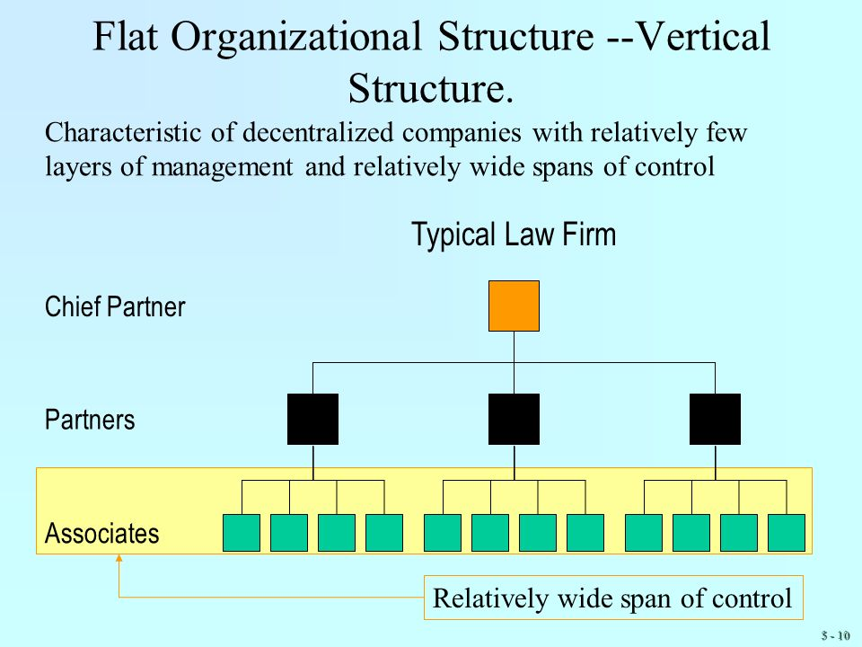 Flat Organizational Structure --Vertical Structure.