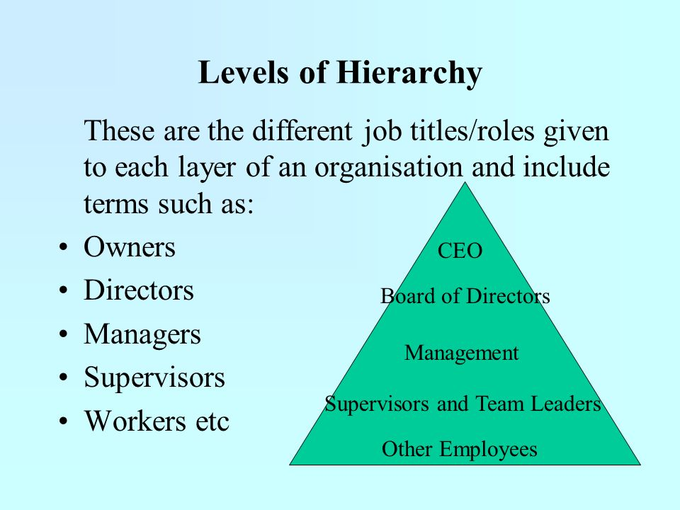 Levels of Hierarchy These are the different job titles/roles given to each layer of an organisation and include terms such as: