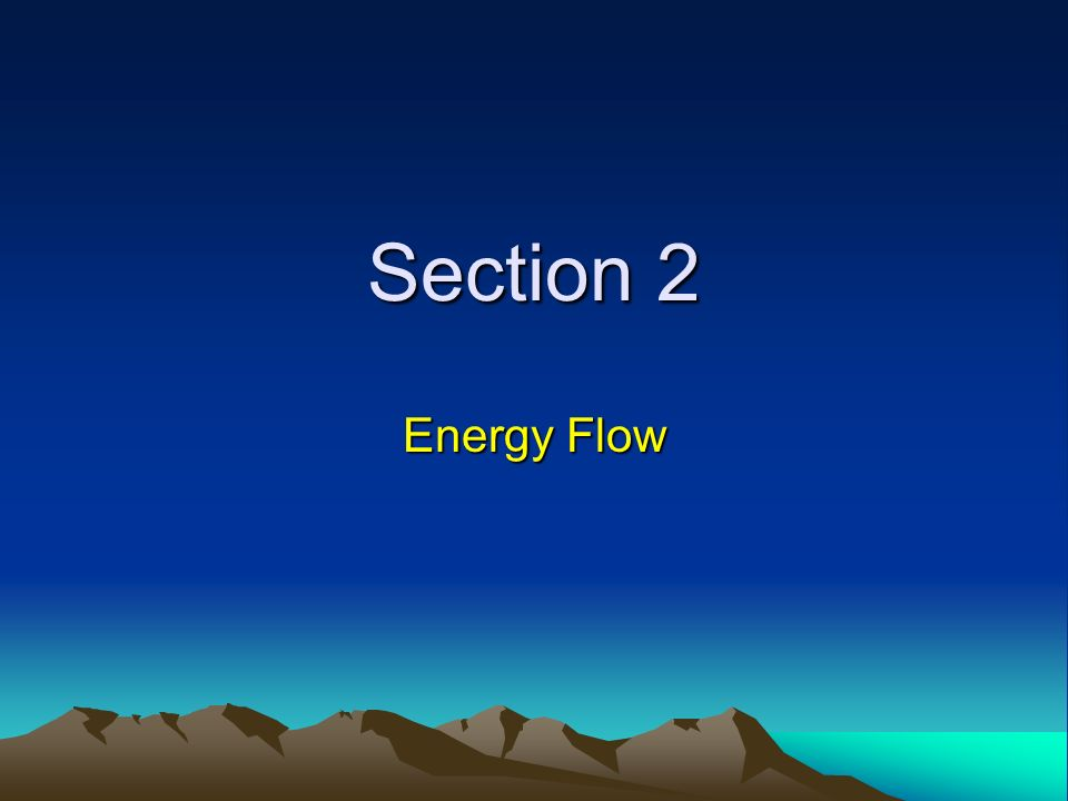 Section 2 Energy Flow