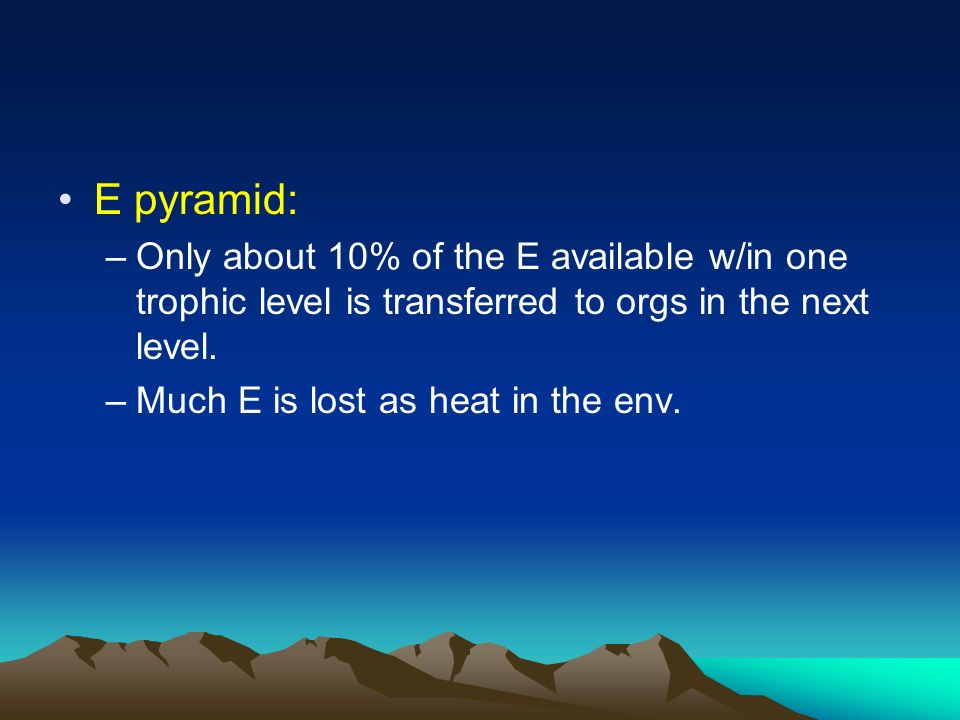 E pyramid: Only about 10% of the E available w/in one trophic level is transferred to orgs in the next level.
