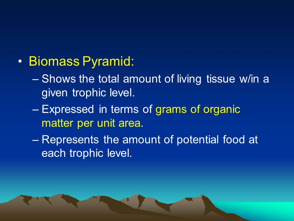 Biomass Pyramid: Shows the total amount of living tissue w/in a given trophic level. Expressed in terms of grams of organic matter per unit area.
