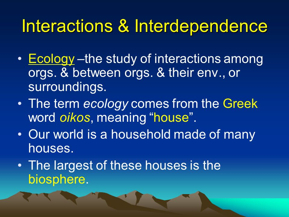 Interactions & Interdependence