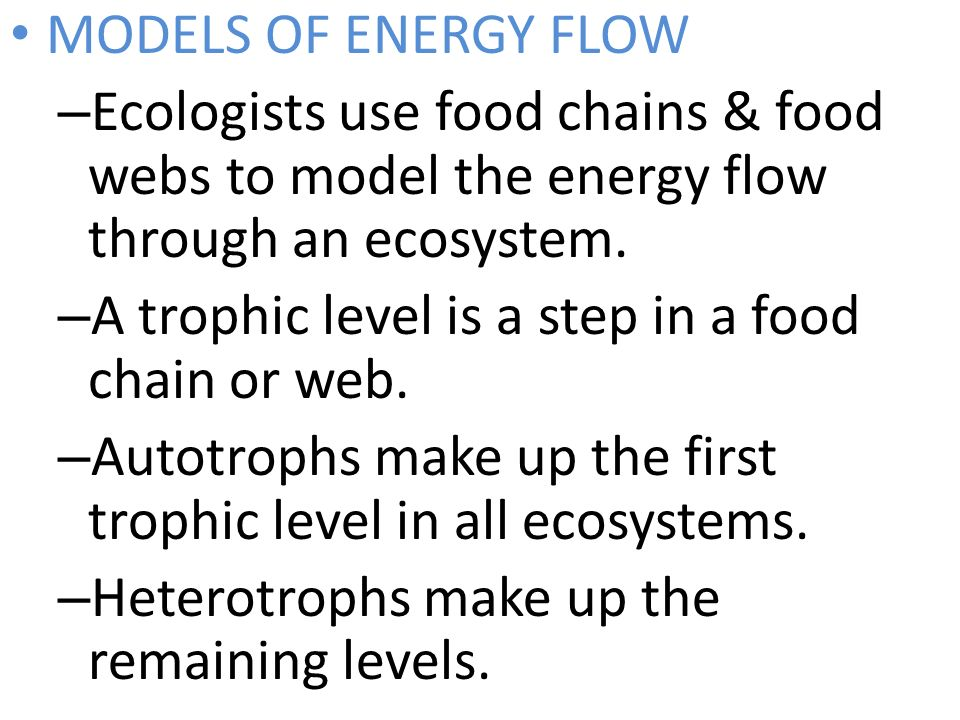 MODELS OF ENERGY FLOW Ecologists use food chains & food webs to model the energy flow through an ecosystem.