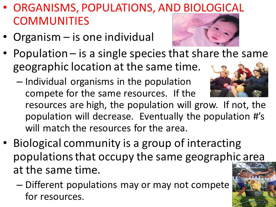 ORGANISMS, POPULATIONS, AND BIOLOGICAL COMMUNITIES