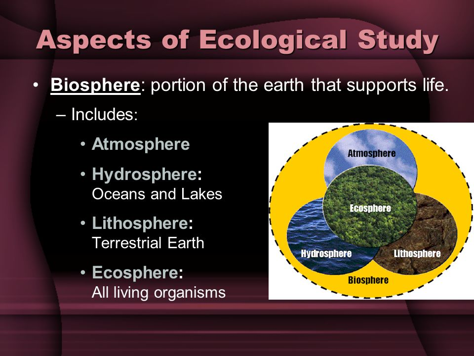 Aspects of Ecological Study