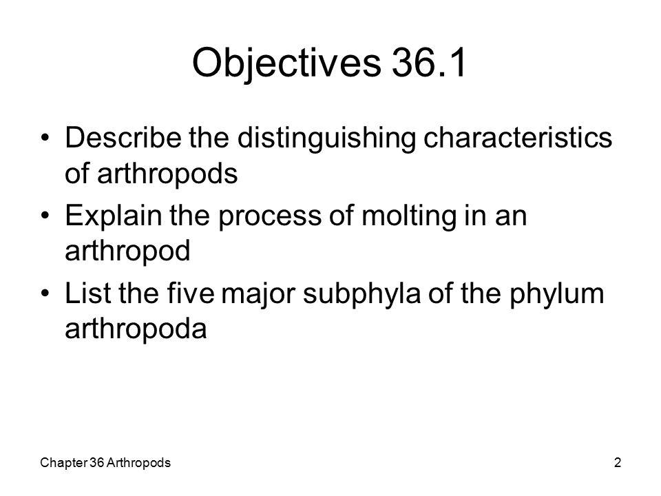 arthropoda characteristics list
