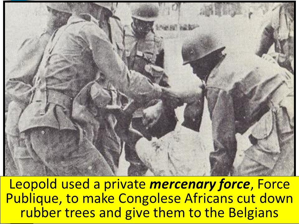 Leopold used a private mercenary force, Force Publique, to make Congolese Africans cut down rubber trees and give them to the Belgians
