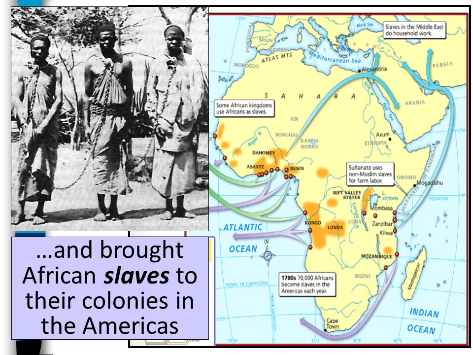 …and brought African slaves to their colonies in the Americas