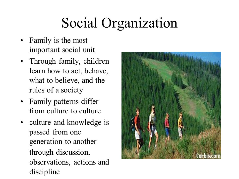 Social Organization Family is the most important social unit