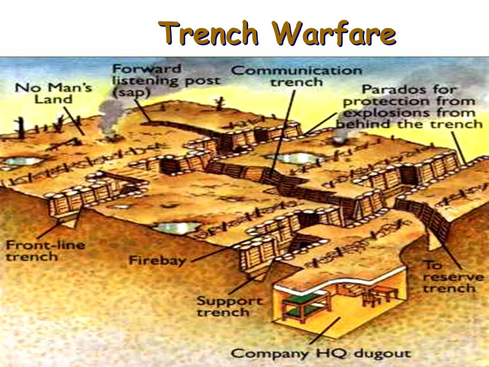 trench warfare in wwi essay Essay, term paper research paper on world war i world war i essays / causes of ww1 trench warfare every aspect of the war, is ugly and brutal apr 21, 2015 the soldiers of wwi were unprepared for the horrors of life in the trenches, in the war to end all wars the soldiers in the trenches were living in.