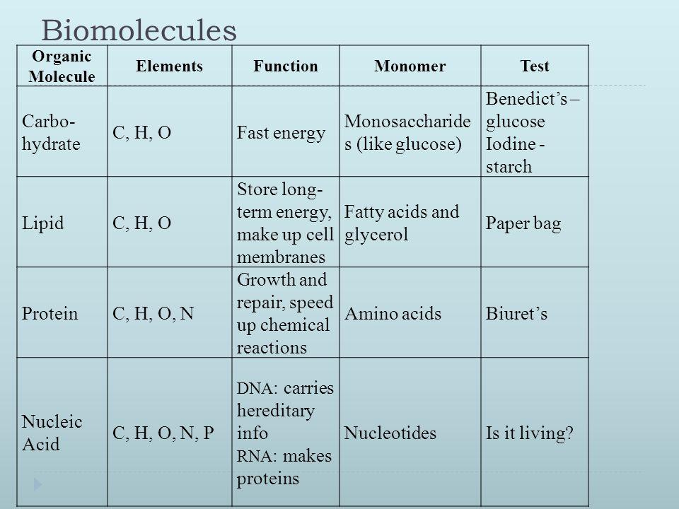 Biochemistry Unit Review Ppt Download