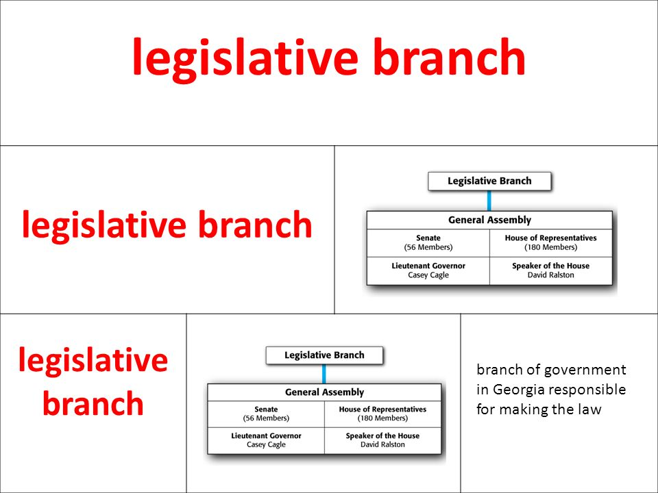 legislative branch branch of government in Georgia responsible for making the law