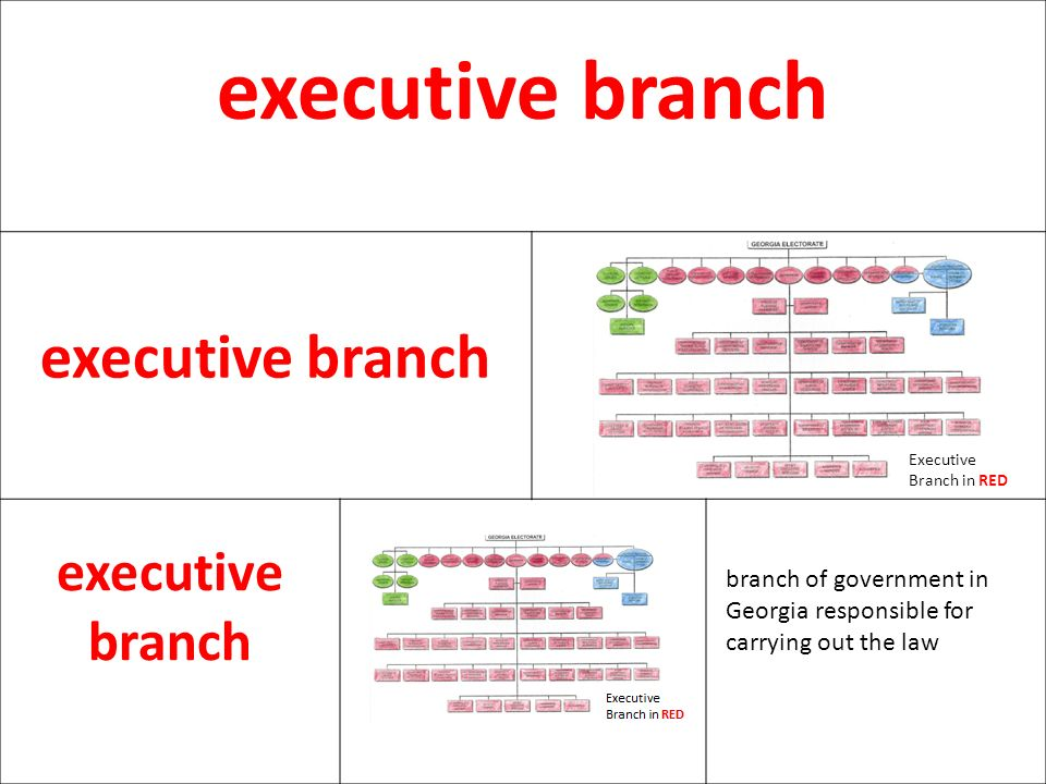 executive branch Executive Branch in RED.
