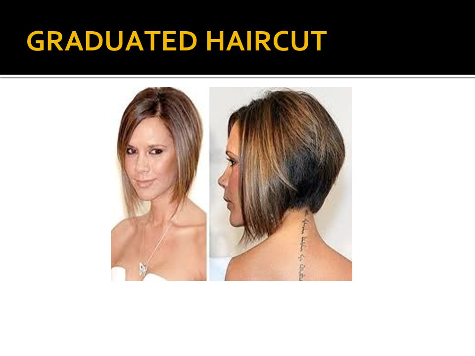Haircutting 1 2 3 Techniques Shapes Execution Ppt Video