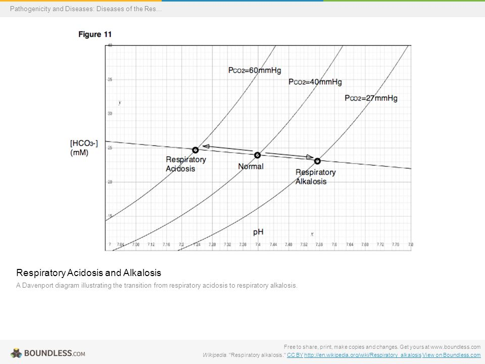 Boundless lecture slides ppt download 47 respiratory acidosis and alkalosis ccuart Images