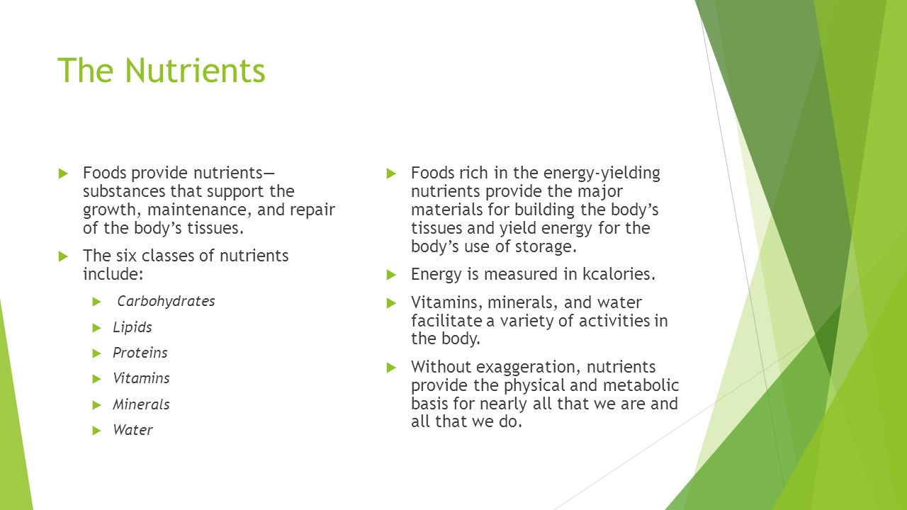 An Overview Of Nutrition Ppt Video Online Download