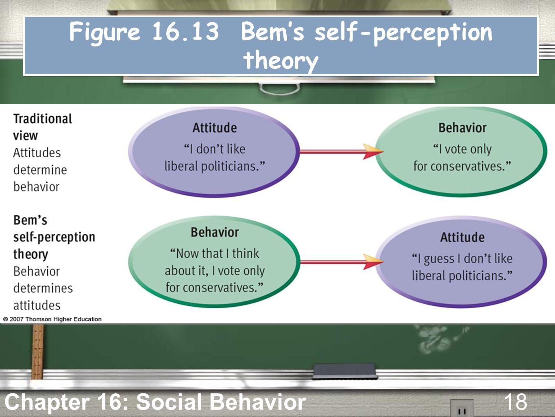 figure bems self perception theory
