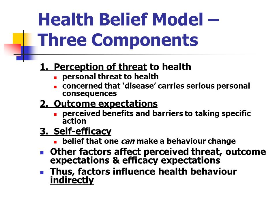 Health Belief Model Three Components