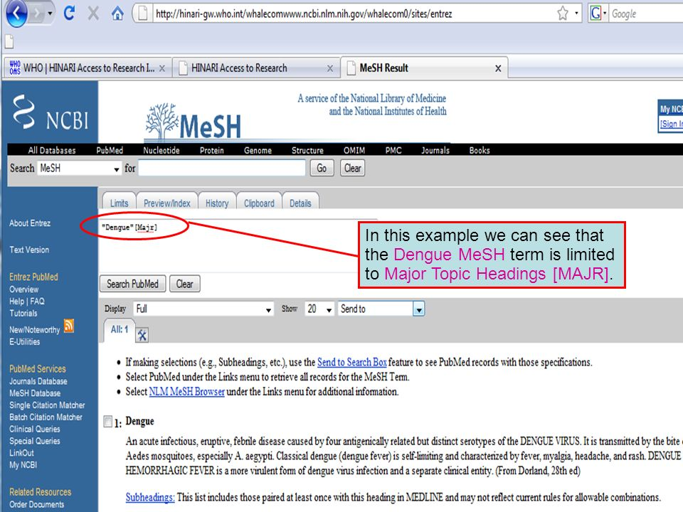 Dengue Major MeSH topic 2