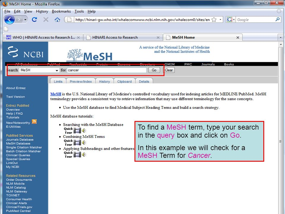 Searching in MeSH To find a MeSH term, type your search in the query box and click on Go.