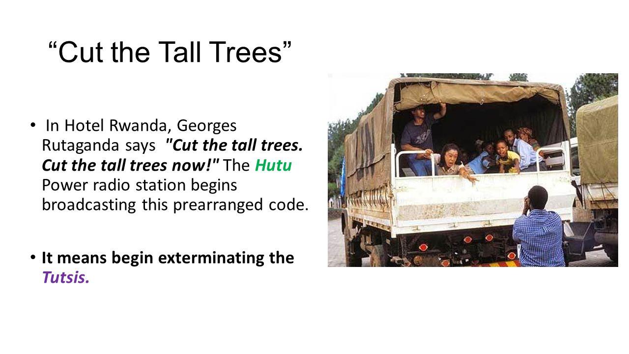 hotel rwanda cut the tall trees