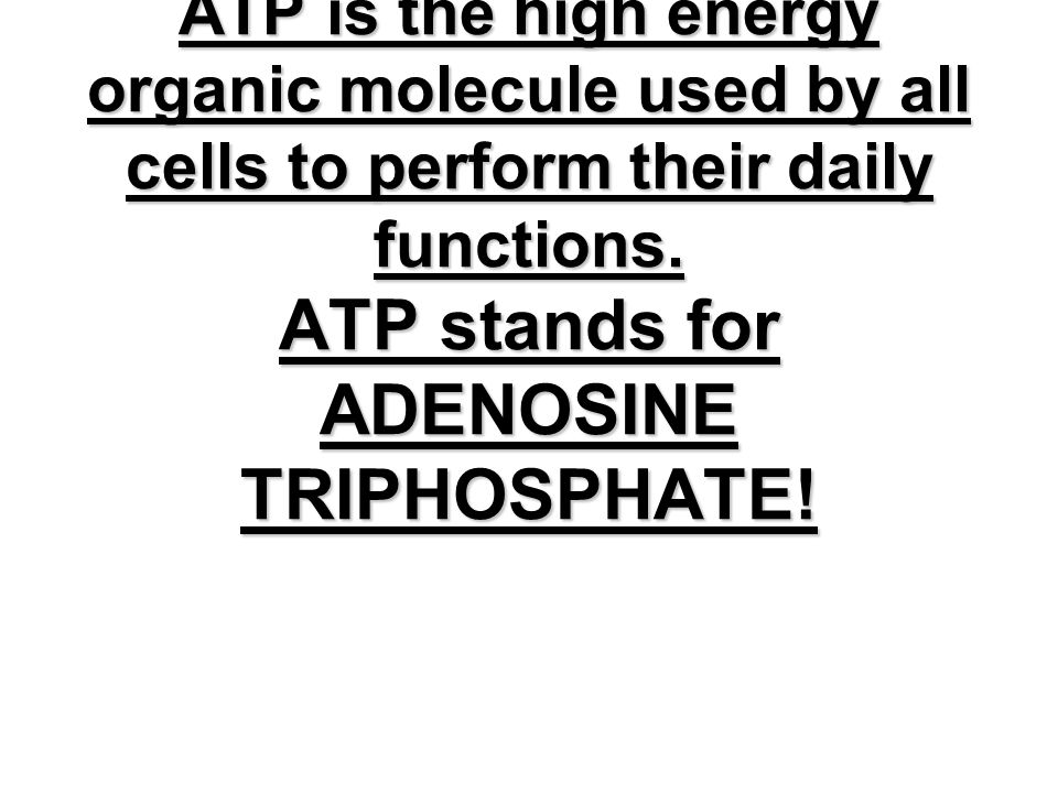9.1 Notes What is ATP ATP is the high energy organic molecule used by all cells to perform their daily functions. ATP stands for ADENOSINE TRIPHOSPHATE!