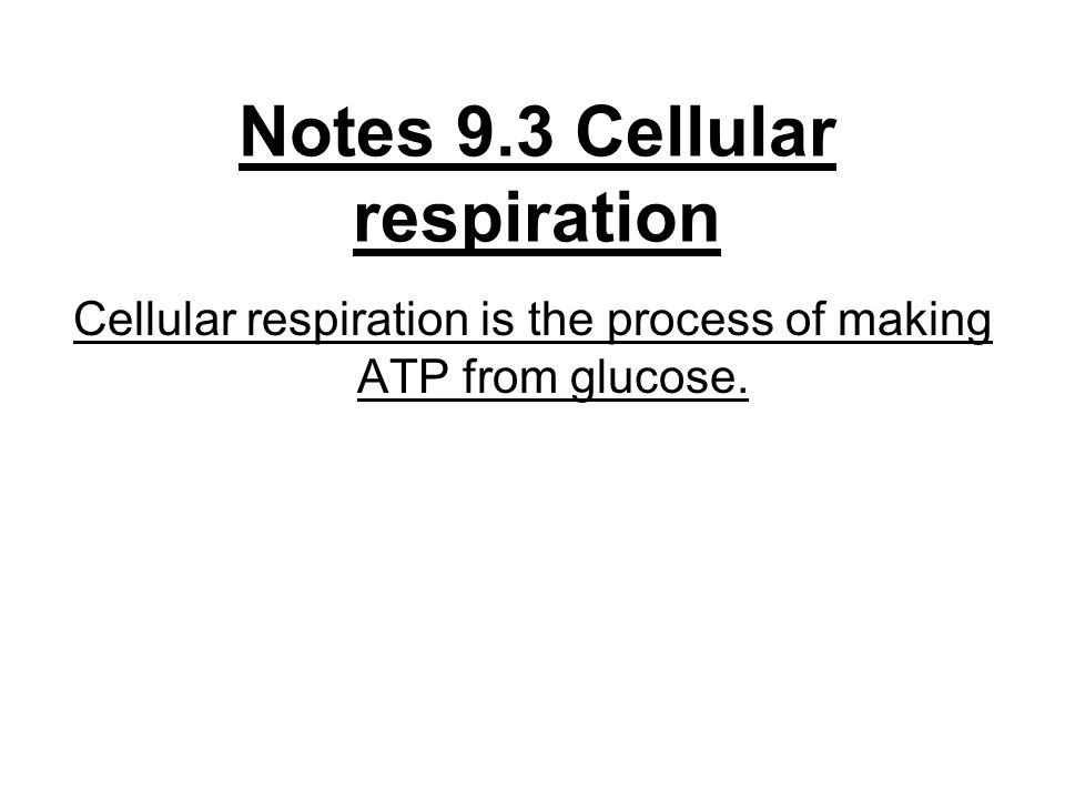 Notes 9.3 Cellular respiration