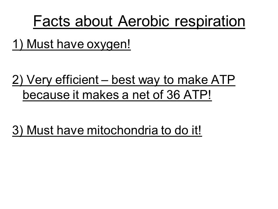 Facts about Aerobic respiration