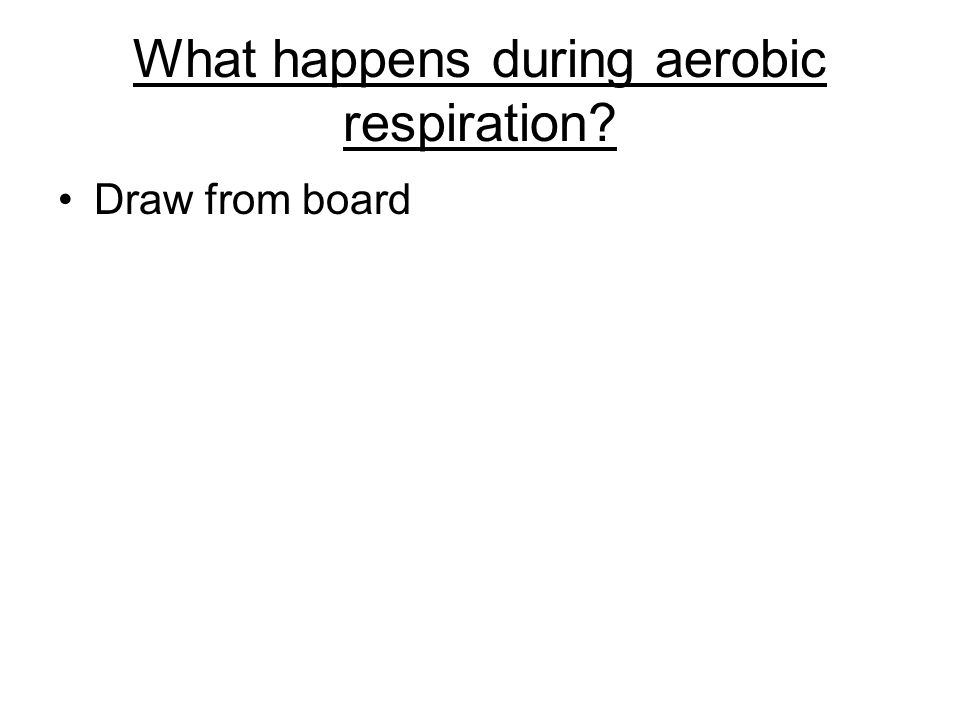 What happens during aerobic respiration