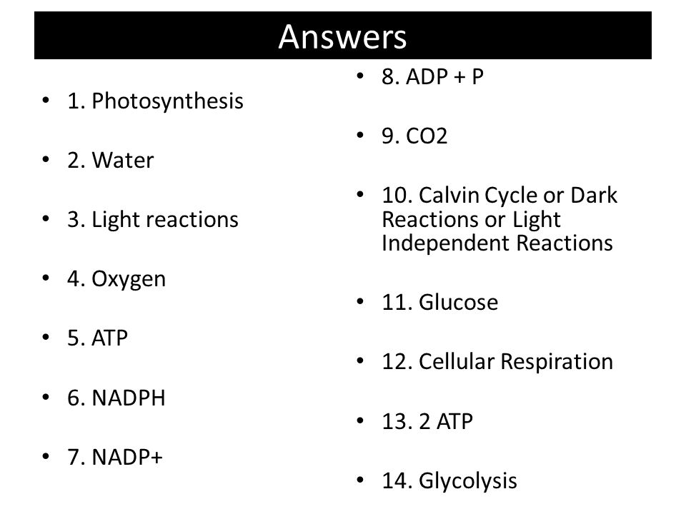 Label Cell Parts Worksheet What Is A Cell Worksheet Answers furthermore  likewise Photosynthesis and Respiration further  additionally Cellular Respiration and Photosynthesis   CK 12 Foundation likewise How do Photosynthesis and Respiration work ther    Florian likewise photosynthesis respiration review packet answer   HoratioHargrove's also Photosynthesis and Cellular Respiration Worksheet Inspirational Cell also  also  moreover  additionally Cell Energy Flow Chart Photosynthesis And Cellular Respiration Pdf moreover Answers   Photosynthesis Worksheet   YouTube likewise Grade Science Worksheets For Teachers All Photosynthesis Grade together with Photosynthesis   Cellular Respiration Concept Map   ppt video online further Week 16 Photosynthesis and Macromolecules   MrBorden's Biology. on photosynthesis and respiration worksheet answers