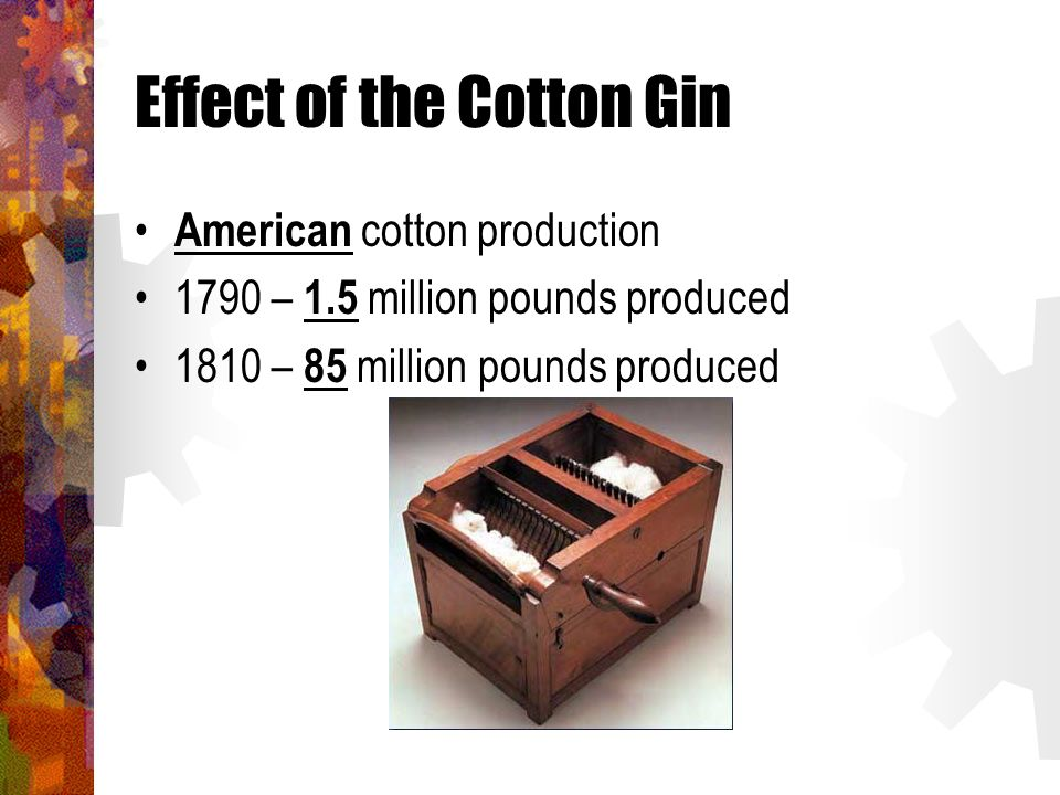 Effect of the Cotton Gin