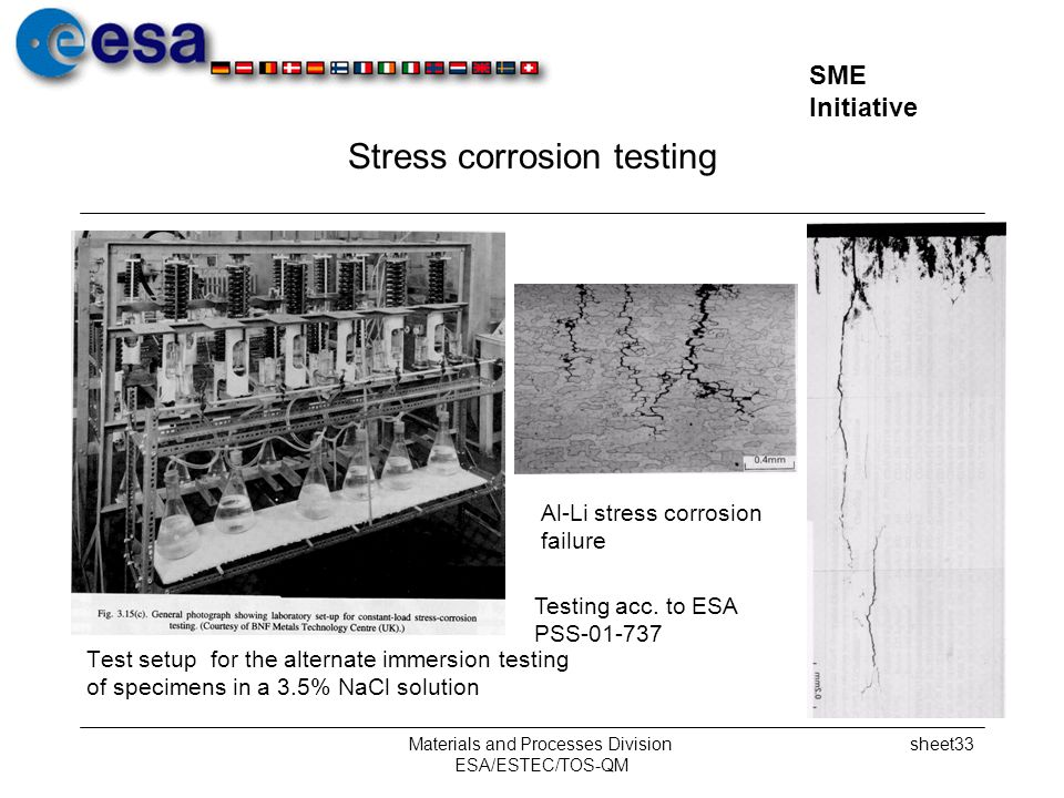 Stress corrosion testing