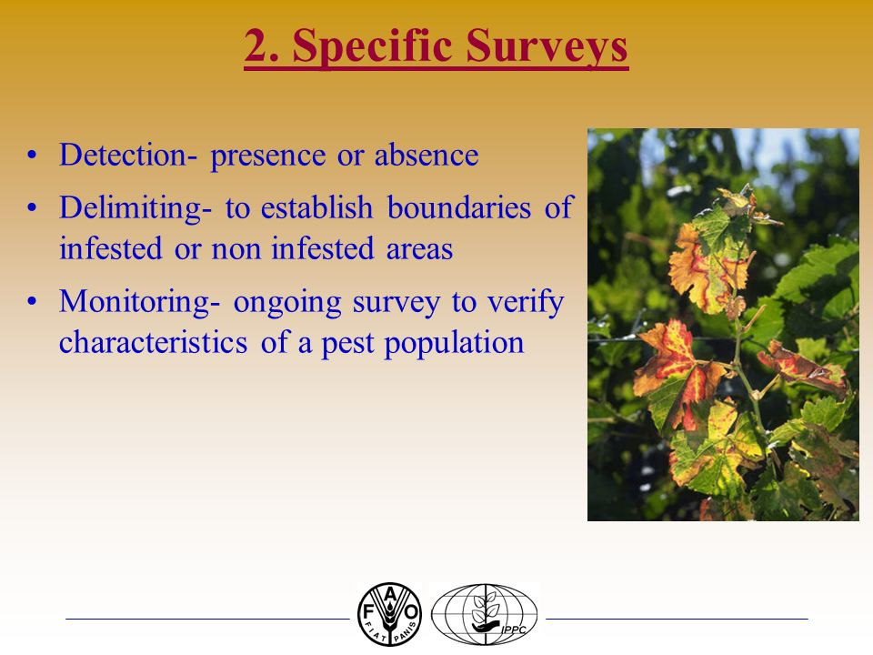2. Specific Surveys Detection- presence or absence
