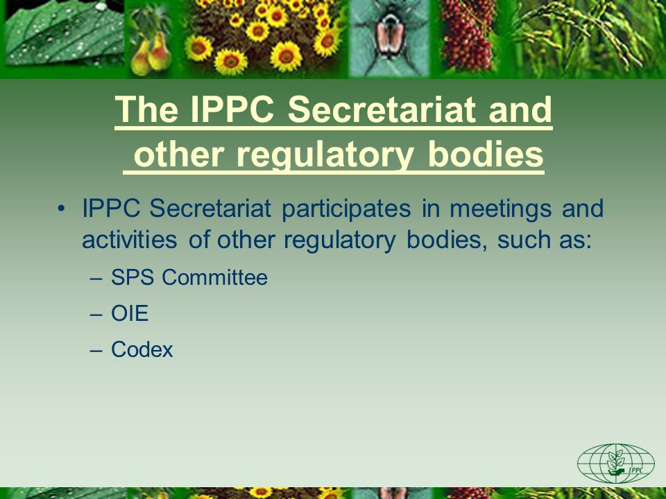 The IPPC Secretariat and other regulatory bodies