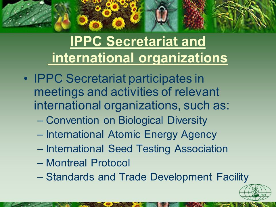 IPPC Secretariat and international organizations