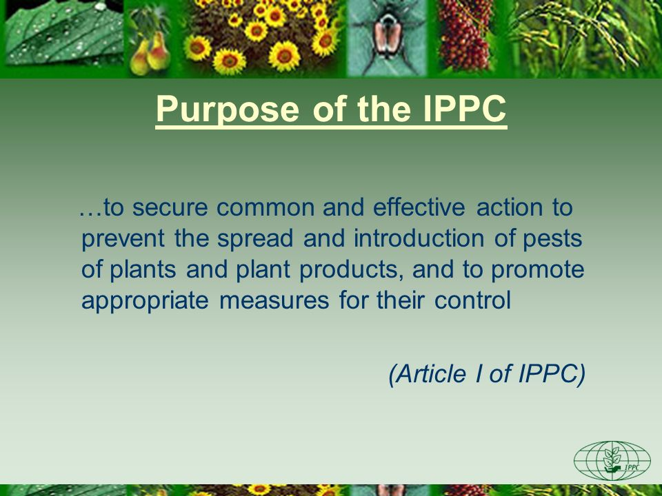 Purpose of the IPPC