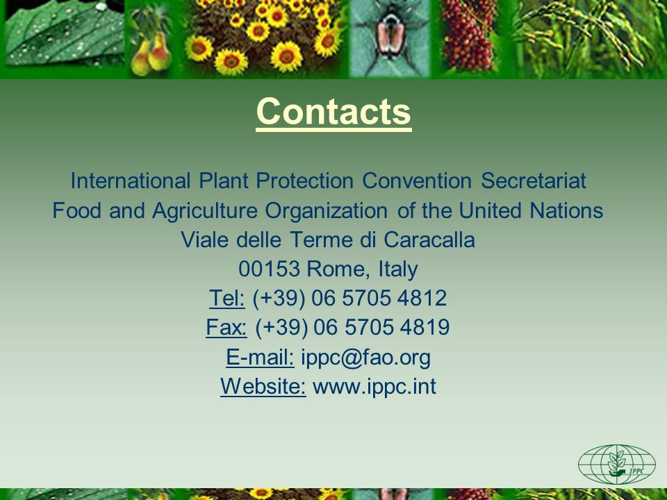 Contacts International Plant Protection Convention Secretariat