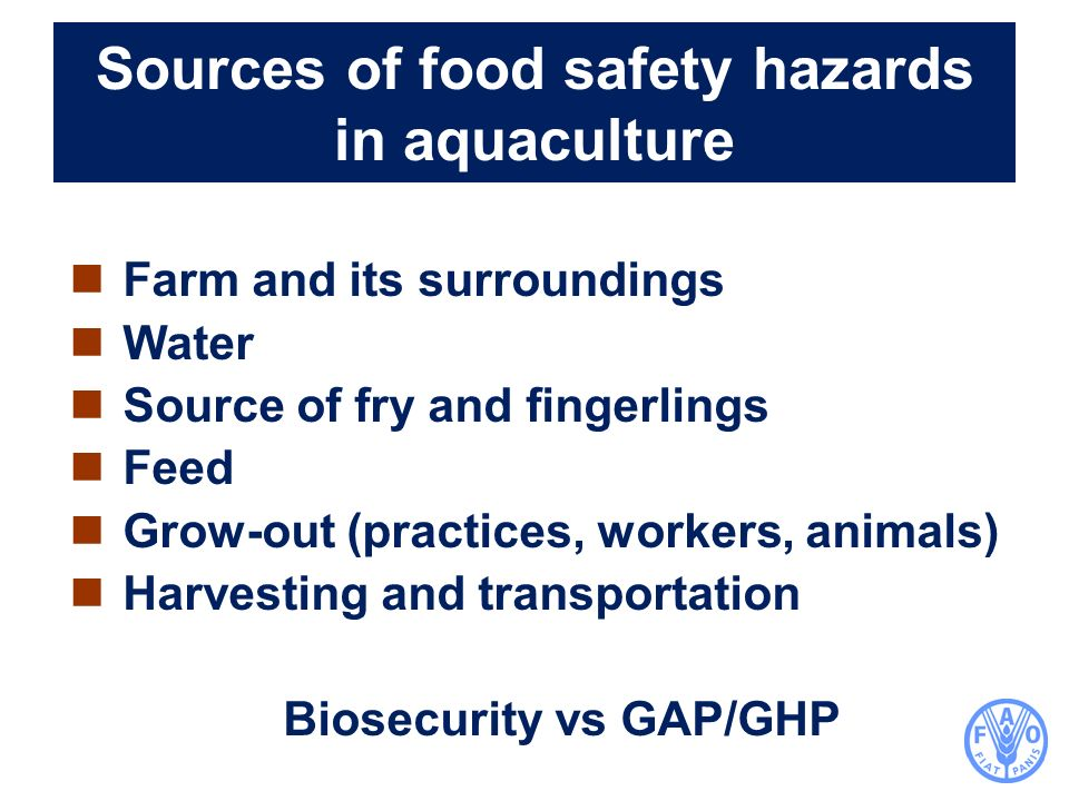 Sources of food safety hazards in aquaculture