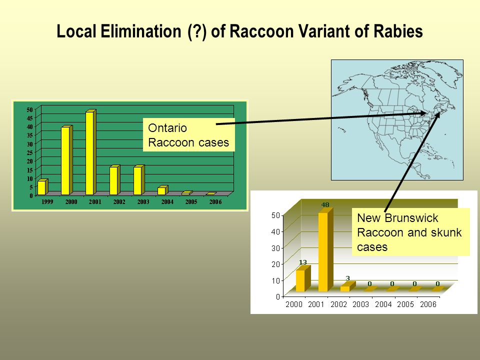 Local Elimination ( ) of Raccoon Variant of Rabies