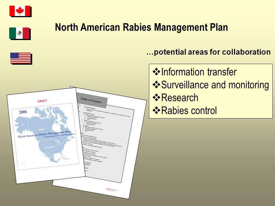 North American Rabies Management Plan