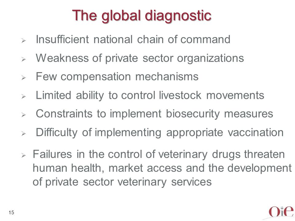 The global diagnostic Insufficient national chain of command