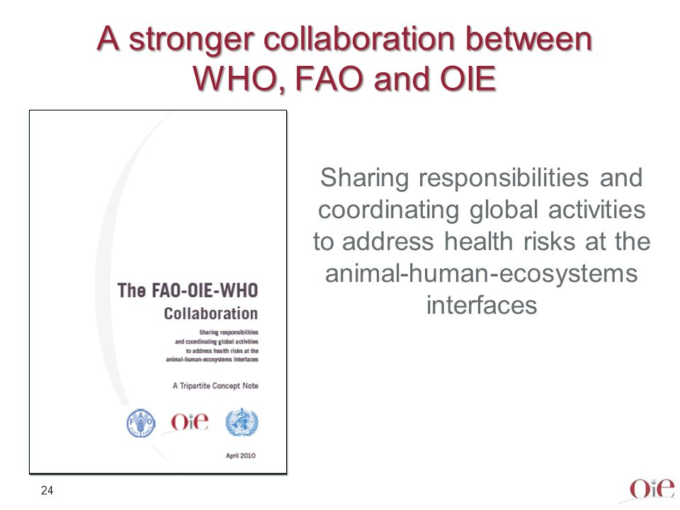 A stronger collaboration between WHO, FAO and OIE