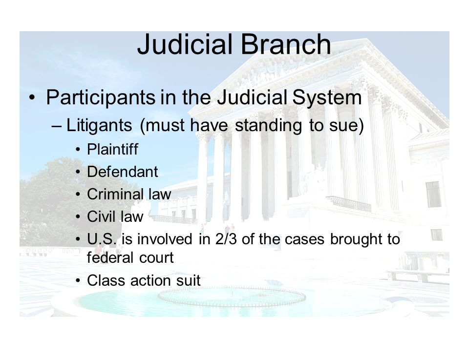 Judicial Branch Participants in the Judicial System