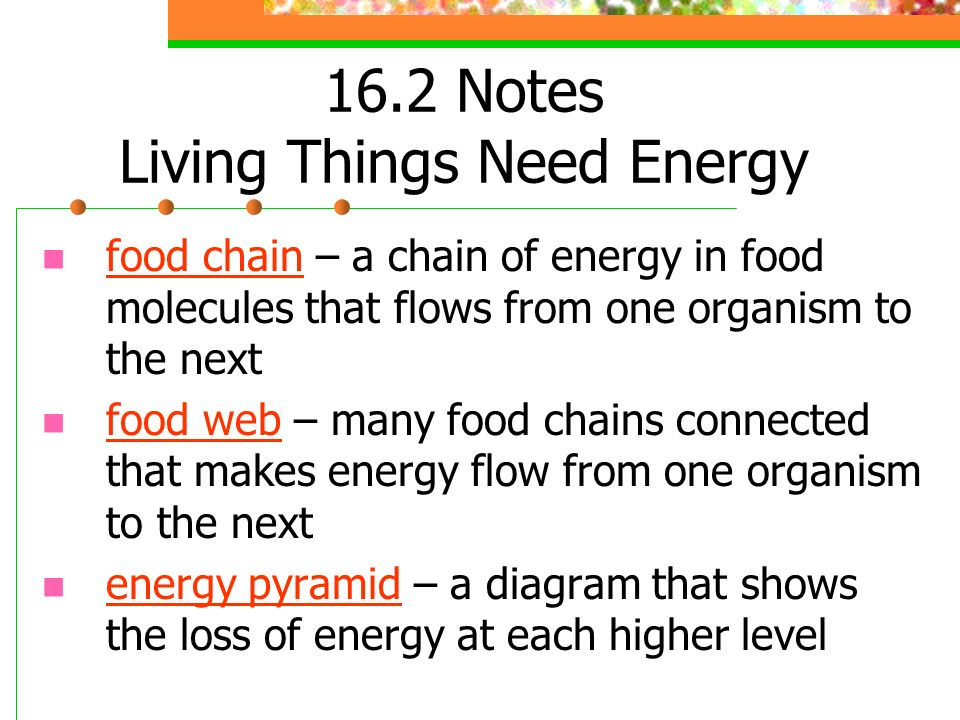 16.2 Notes Living Things Need Energy