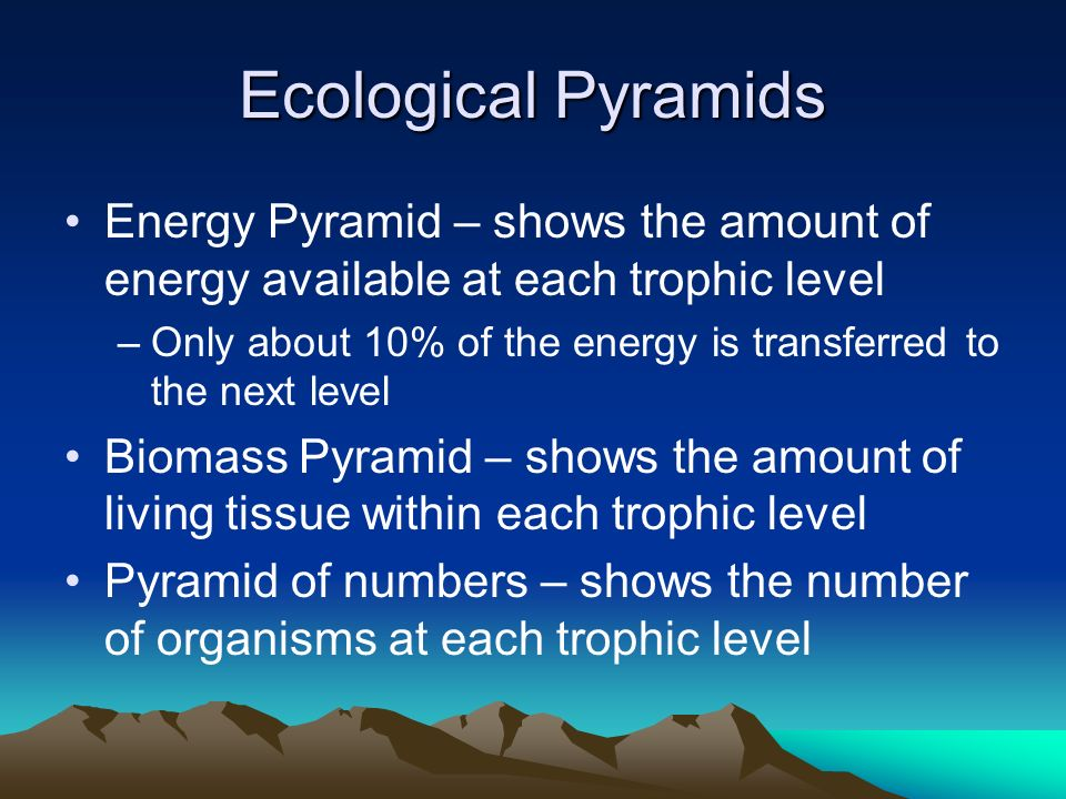 Ecological Pyramids Energy Pyramid – shows the amount of energy available at each trophic level.