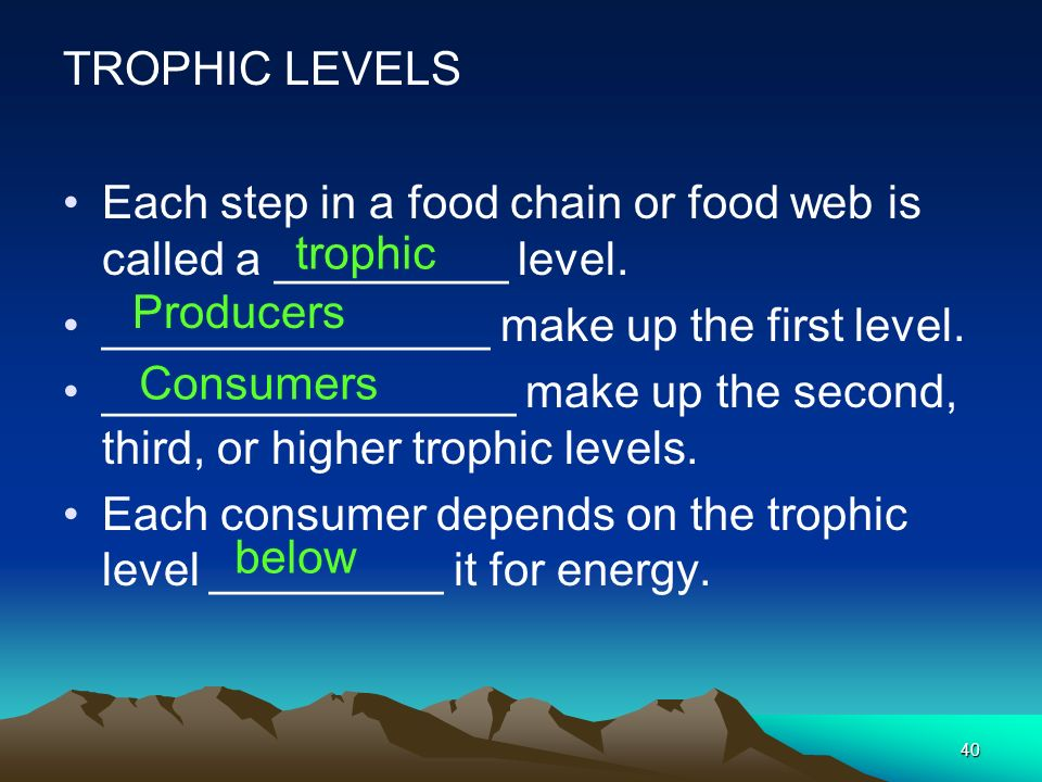 TROPHIC LEVELS Each step in a food chain or food web is called a _________ level. _______________ make up the first level.