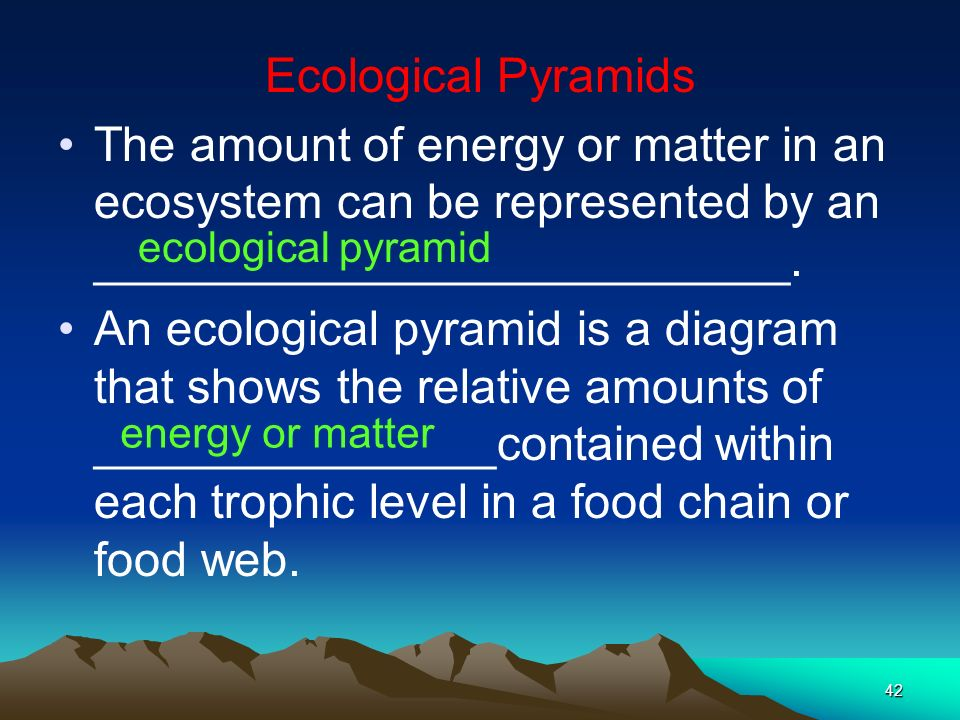 Ecological Pyramids The amount of energy or matter in an ecosystem can be represented by an __________________________.