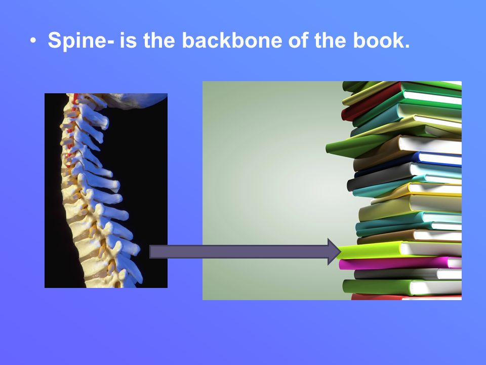 Spine- is the backbone of the book.