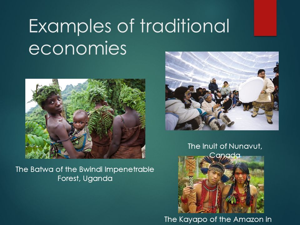 What Are The Different Kinds Of Economic Systems Ppt Video